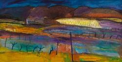 Vineyard at Night, Argens