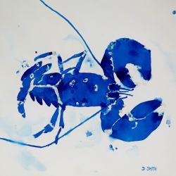 Blue Squat Lobster