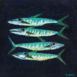 Sea of Blue Mackerel